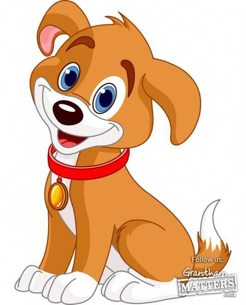 Dog Astrology: Your dog's zodiac, compatibility and horoscope revealed!